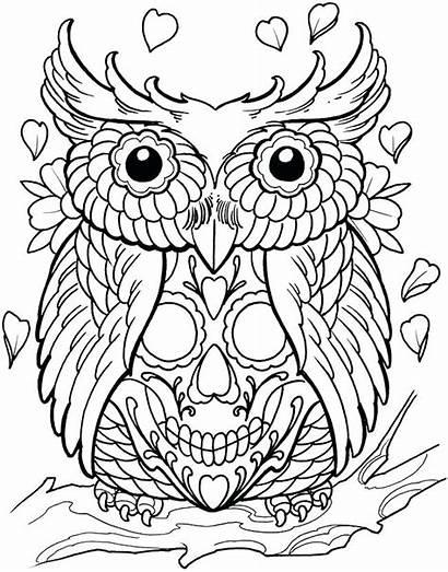 Coloring Skull Tattoo Pages Tattoos Sugar Henna