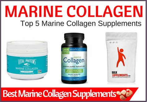 The Best Collagen Supplements Best Marine Collagen 2018 Top 5 Supplements For Quality