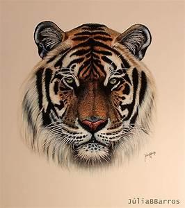Desenho Tigre // Tiger Drawing on Behance