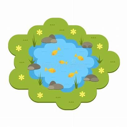 Pond Cartoon Water Animals Plants Garden Illustrazione