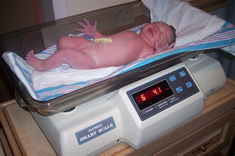 Birth Weight Wikipedia
