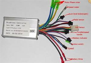 36v 250w Wiring Diagram From Greentime