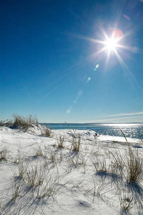87 best images about Perdido Key on Pinterest   The oyster