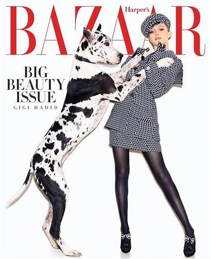 Gigi Hadid Bazaar Harper Magazine Covers Vivanco