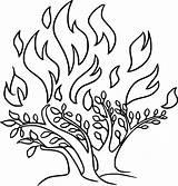 Bushfire Coloring 720px 97kb sketch template