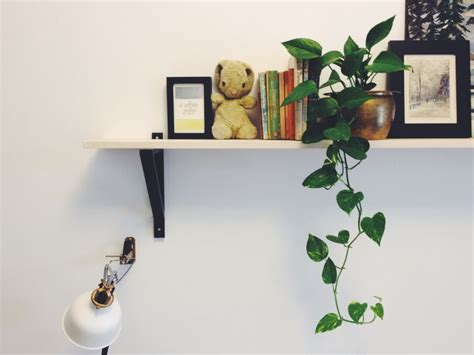 25+ Best Ideas About Shelf Over Bed On Pinterest