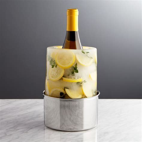 Ice Mold/Wine Bottle Chiller   Crate and Barrel