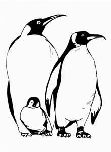 Malvorlagen Zum Ausdrucken Ausmalbilder Pinguin Kostenlos 1