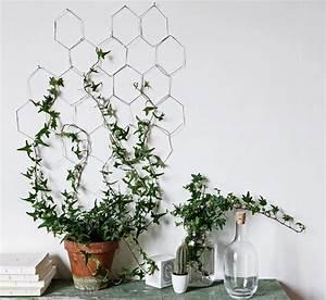 Plante Intérieur Grimpante : r aliser une treille en fer pour plantes d 39 int rieur maison cr ative ~ Louise-bijoux.com Idées de Décoration