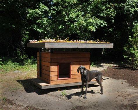 eco doghouse   recycled building materials coates design sustainability blog