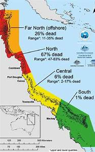 Loss Of Coral On The Great Barrier Reef  Arc Centre Of