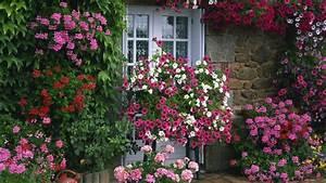 Free Summer Garden Desktop Wallpaper