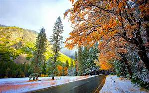 Winter Nature HD Wallpapers