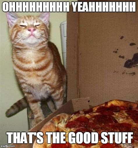 Meme Stuff - happy cat breathes in the awesome imgflip