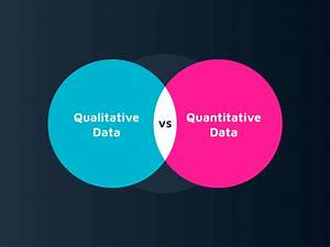 Qualitative Data Vs  Quantitative Data  A Marketers U2019 Guide