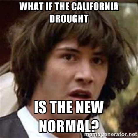 Normal Meme - the new normal memes image memes at relatably com
