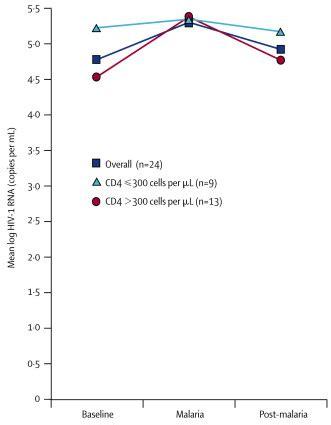 effect  plasmodium falciparum malaria  concentration