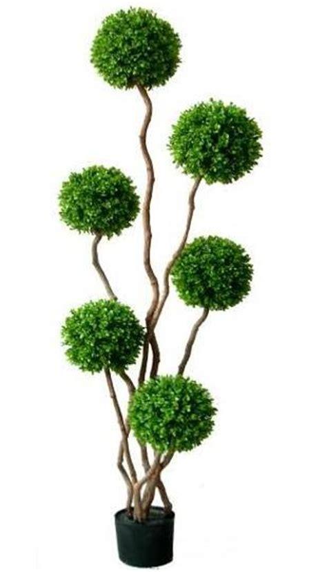 boxwood topiary trees artificial topiary trees topiary 5 boxwood plant 1773