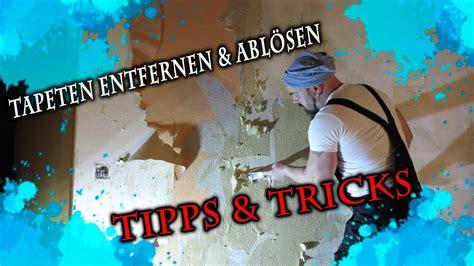 tapeten entfernen tipps tapeten entfernen abl 246 sen tipps und tricks