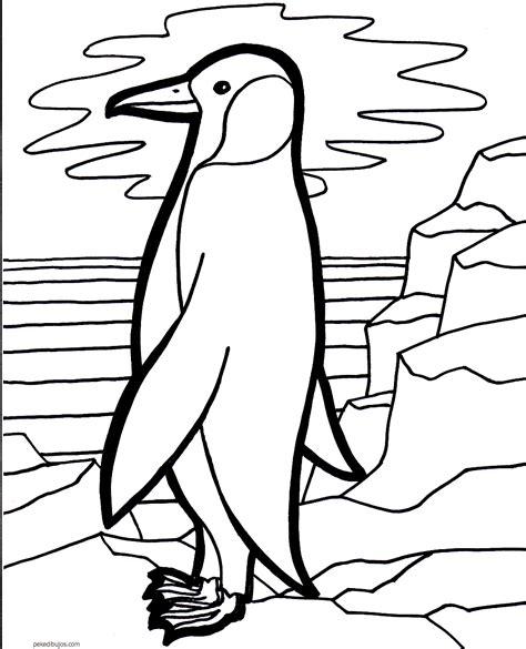Dibujos de pingüinos para colorear