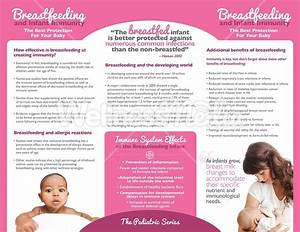 breastfeeding and infant immunity brochure With breastfeeding brochure templates
