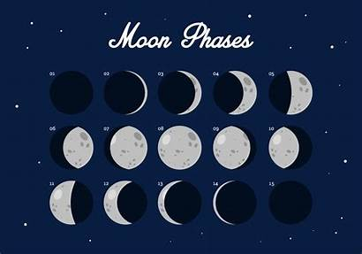 Moon Phase Phases Vecteezy Luna Fase Vettoriale