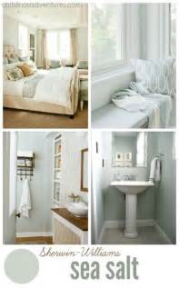 most popular bathroom colors sherwin williams 25 best ideas about coastal paint colors on