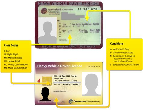 Understanding Your Licence Gc & Brisbane