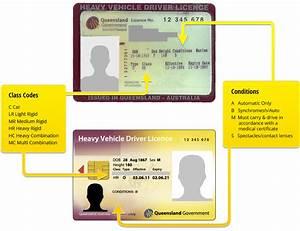 Understanding Your Licence Gc  U0026 Brisbane