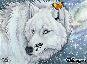 Bilder Mit Glitzer : glitzer wolf bild 122704759 ~ Jslefanu.com Haus und Dekorationen