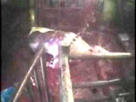 PETA Agriprocessors 2004 - YouTube