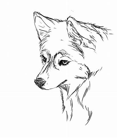 Puppy Coloring Pages Easy Husky Getdrawings Colorings