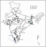 Measles India Drawing Progress Rubella Mortality Polio Implementing Reduction Strategies Surveillance Outbreak Getdrawings Cdc Project States sketch template