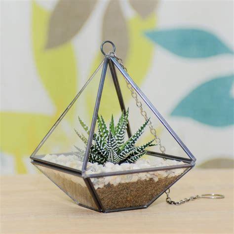 Mini Terrarium Glas by Mini Geometric Glass Vase Succulent Terrarium Kit By