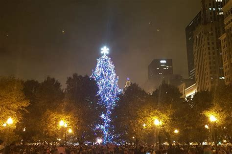 annual christmas tree lighting ceremony illuminates