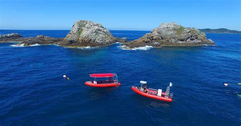 scuba dive  byron bay intro  certified dive rtw