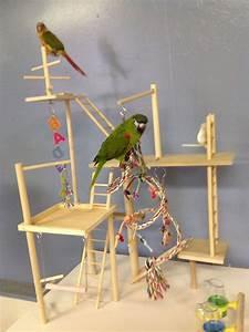 Best 25+ Parrot play stand ideas on Pinterest | Bird play ...
