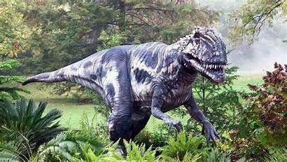 Dinosaur Resolution Amazing Wallpapers