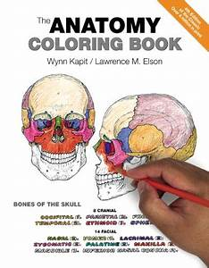The Anatomy Coloring Book 4th Edition Pdf Pdf Free