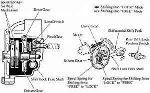 Biopsy Of A Toyota E