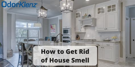rid  house smell