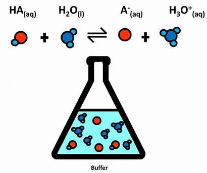 Buffer Biological Experiment Buffers Chemistry Acid Base