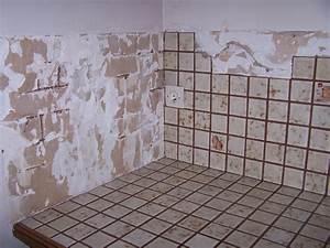 Brico Depot Carrelage : cuisine gagnant carrelage mural cuisine carrelage mural ~ Melissatoandfro.com Idées de Décoration