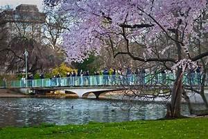 Parks In London : st james s park central london united kingdom ~ Yasmunasinghe.com Haus und Dekorationen