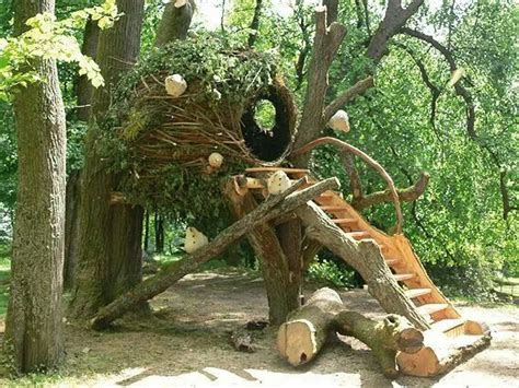 kind  tree house outdoor  backyard