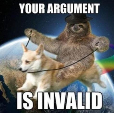 Your Argument Is Invalid Memes - sloth invalided argument your argument is invalid know your meme