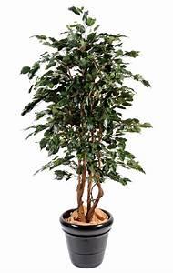 Arbre D Intérieur : arbre artificiel ficus exotica plante d 39 int rieur cm vert ~ Preciouscoupons.com Idées de Décoration