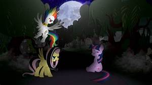 Fluttershy and Rainbow Dash are angry to Twilight by