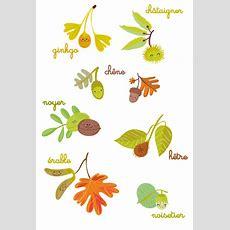 Dessins D'automne  Yiyibuni  Les Illus De Laurence Schluth  Automne  Autumn Theme, Hello