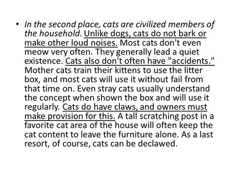 cats better dogs pets essays opinion which essay paragraph dog than believe